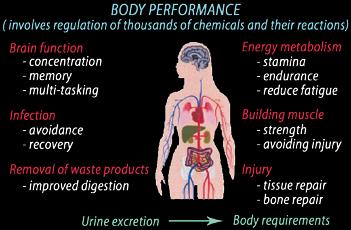 Urinary Analysis - Dr BiolabDr Biolab